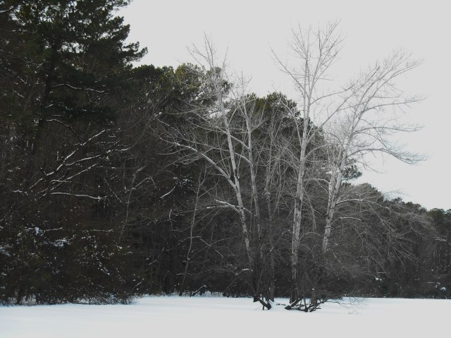 Late February, 2015