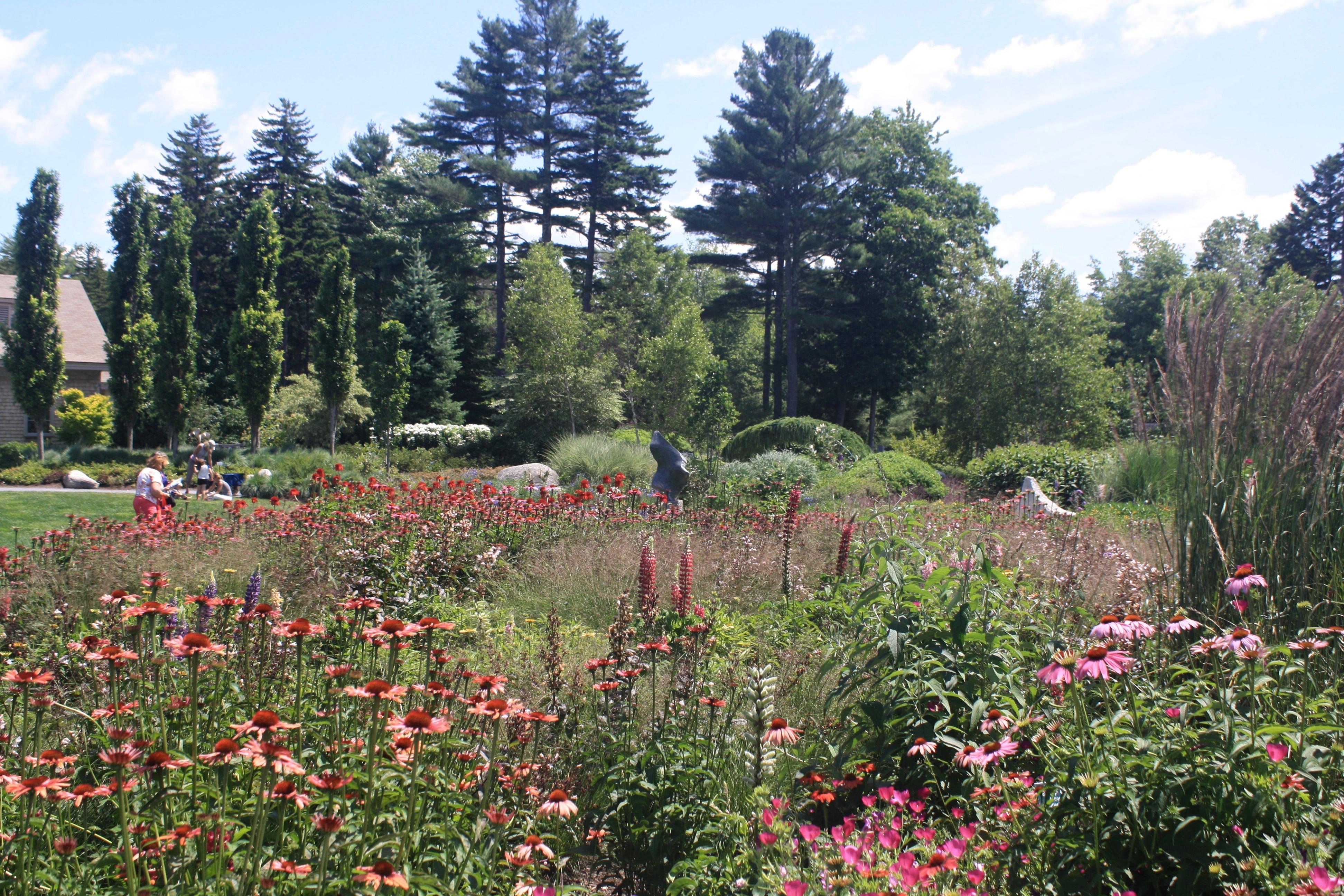 Coastal Maine Botanical Gardens Eliza Waters