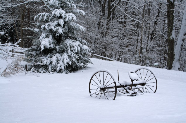 Hay Rake in Snow