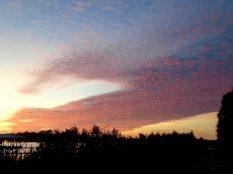 Cirrus sunset