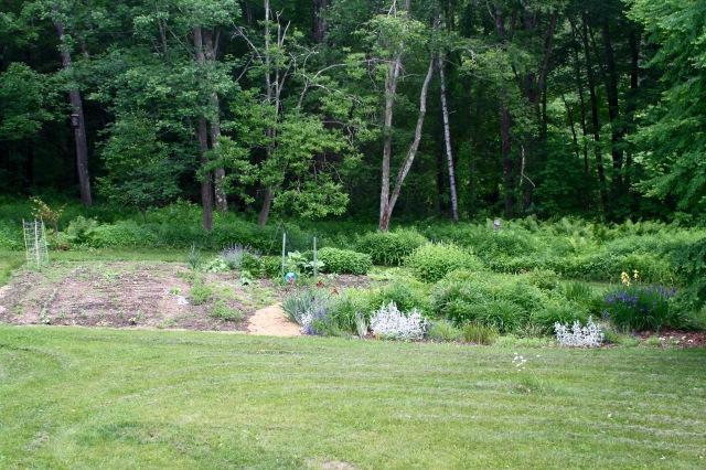 Main Garden 6/18/19
