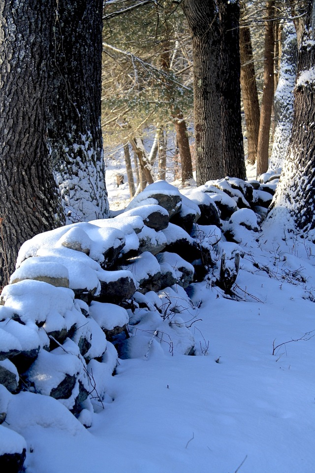 Snowy Stonewall