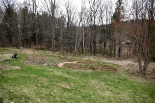 April garden and woodland