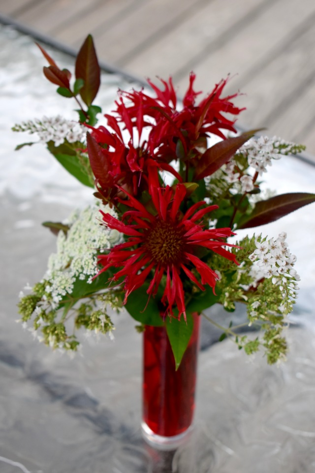 Monarda flower arrangement